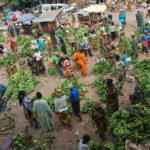 A typical banana and plantain market at Ikire in Osun State, Nigeria. Banana and plantain are staple foods for food security. Photo by Adebayo/IITA.