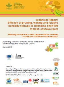 Technical report: efficacy of pruning, waxing and relative humidity storage in extending shelf-life of fresh cassava roots. Extending the shelf-life of fresh cassava roots for increased incomes and postharvest losses reduction.