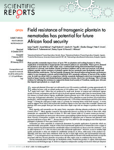 Field resistance of transgenic plantain to nematodes has potential for future African food security