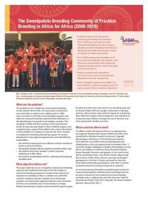 SASHA Brief 01. The sweetpotato breeding community of practice: Breeding in Africa for Africa (2009-2019).