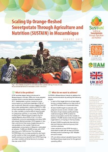 Scaling up orange-fleshed sweetpotato through agriculture and nutrition (SUSTAIN) in Mozambique