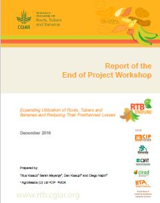 Report of the end of project workshop
