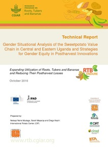 Gender situational analysis of the sweetpotato value chain in Central and Eastern Uganda and strategies for gender equity in postharvest innovations.