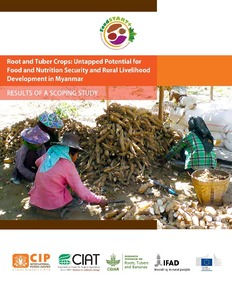 Root and tuber crops: Untapped potential for food and nutrition security and rural livelihood development in Myanmar. Results of a scoping study.
