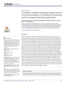 S-acylation mediates Mungbean yellow mosaic virus AC4 localization to the plasma membrane and in turns gene silencing suppression