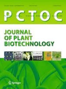 Efficient slow-growth conservation and assessment of clonal fidelity of Ullucus tuberosus Caldas microshoots