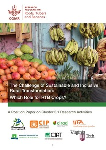 The challenge of sustainable and inclusive rural transformation: which role for RTB crops? A position paper on Cluster 5.1 Research Activities.