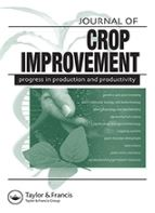 Comparative analysis for producing sweetpotato pre-basic seed using sandponics and conventional systems.